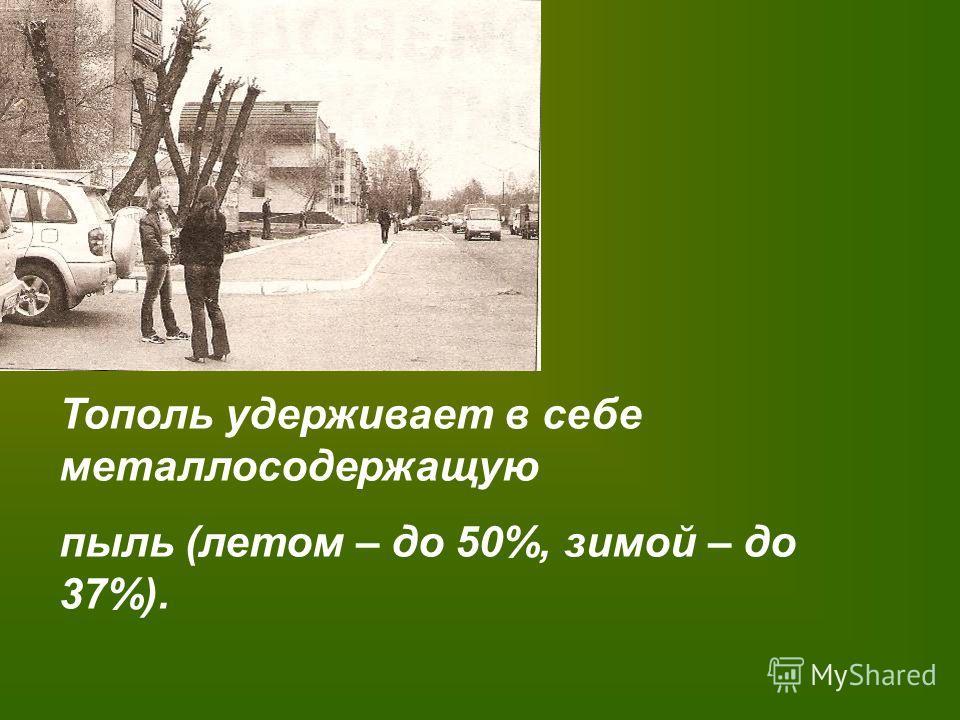 Ровесник Правления Екатерины II