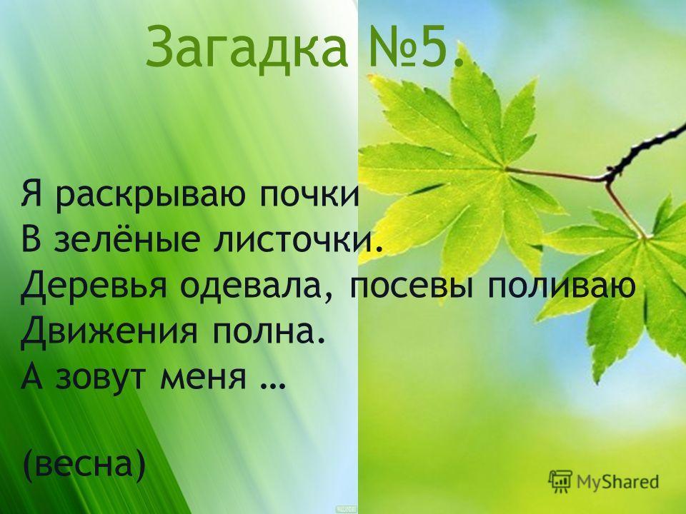 Загадка 5. Я раскрываю почки В зелёные листочки. Деревья одевала, посевы поливаю Движения полна. А зовут меня … (весна)