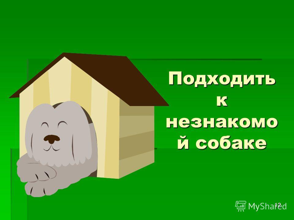 12 Подходить к незнакомо й собаке