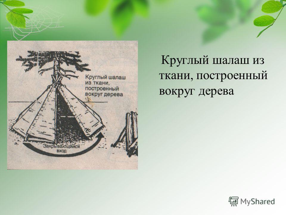 Круглый шалаш из ткани, построенный вокруг дерева