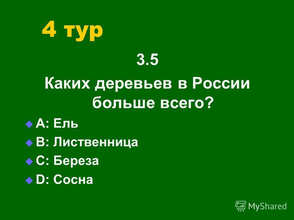 4 тур 3.5 Каких деревьев в России больше всего? А: Ель В: Лиственница С: Береза D: Сосна