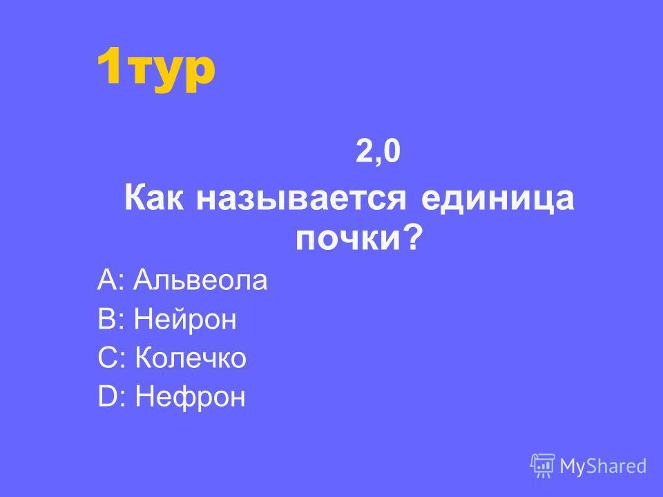 2,0 Как называется единица почки? А: Альвеола В: Нейрон С: Колечко D: Нефрон