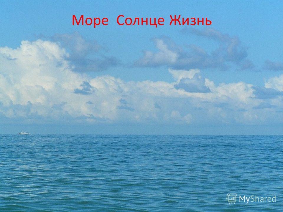 Море Солнце Жизнь