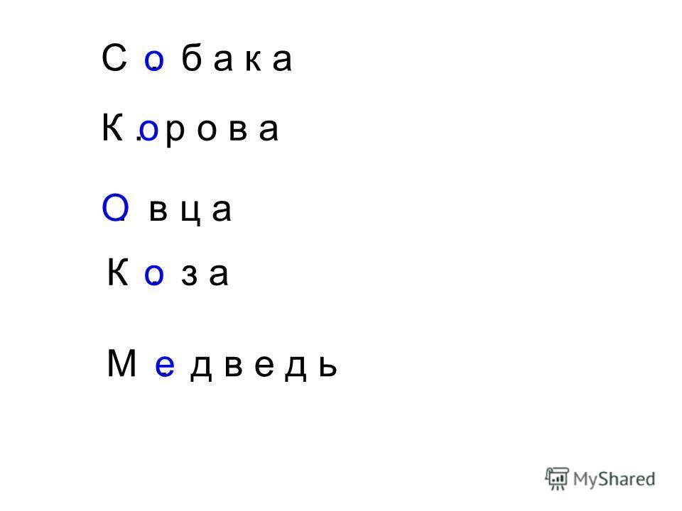 С. б а к а К. р о в а. в ц а К. з а М. д в е д ь о О о о е