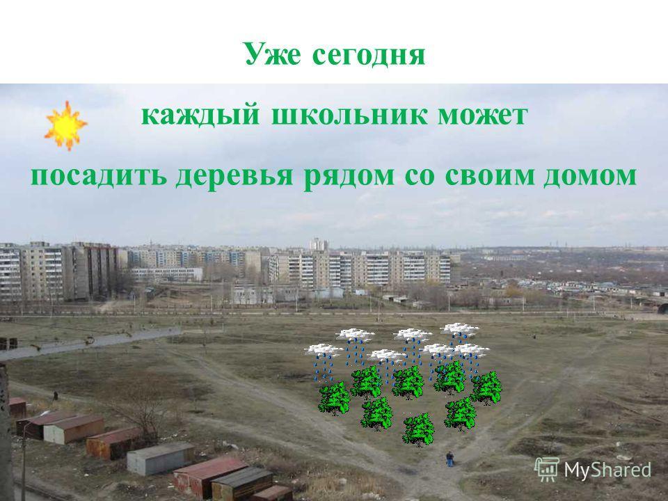 Уже сегодня каждый школьник может посадить деревья рядом со своим домом