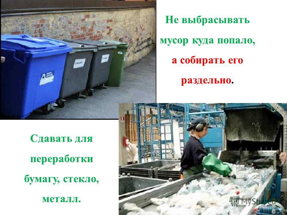 Не выбрасывать мусор куда попало, а собирать его раздельно. Сдавать для переработки бумагу, стекло, металл.