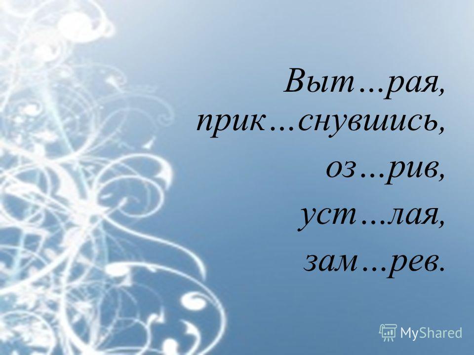 Выт…рая, прик…снувшись, оз…рив, уст…лая, зам…рев.
