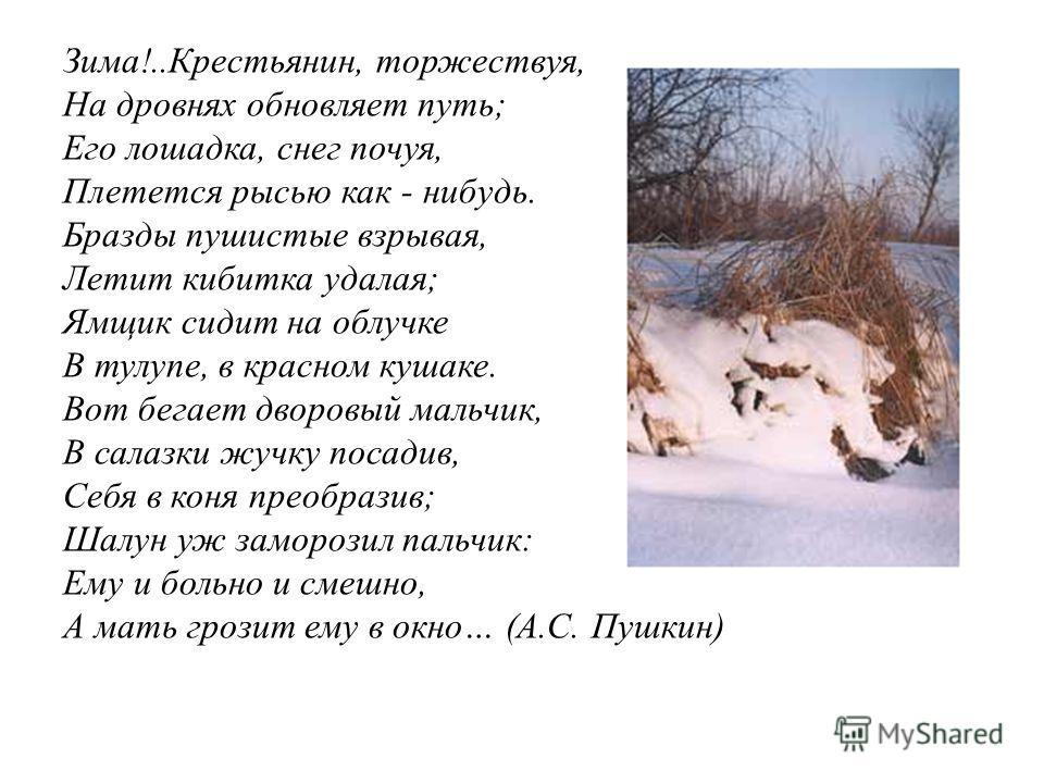 Зима!..Крестьянин, торжествуя, На дровнях обновляет путь; Его лошадка, снег почуя, Плетется рысью как - нибудь. Бразды пушистые взрывая, Летит кибитка удалая; Ямщик сидит на облучке В тулупе, в красном кушаке. Вот бегает дворовый мальчик, В салазки ж