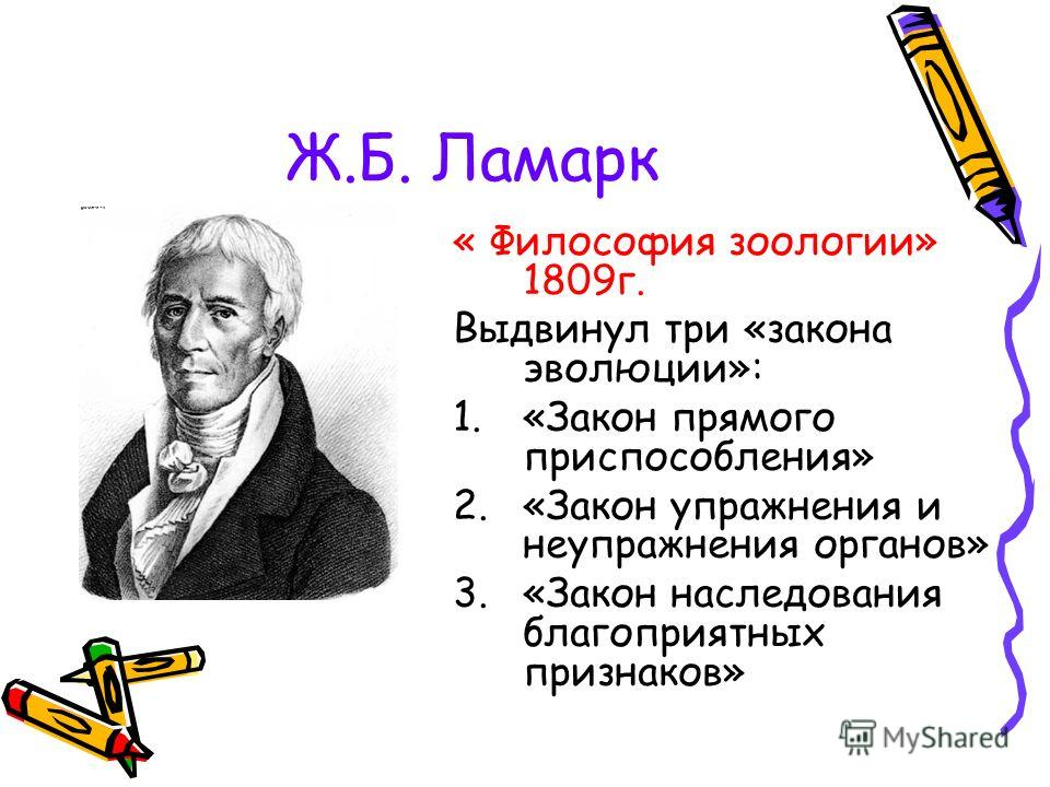 « Философия зоологии» 1809г. Выдвинул три «закона эволюции»: 1.«Закон прямого приспособления» 2.«Закон упражнения и неупражнения органов» 3.«Закон наследования благоприятных признаков»