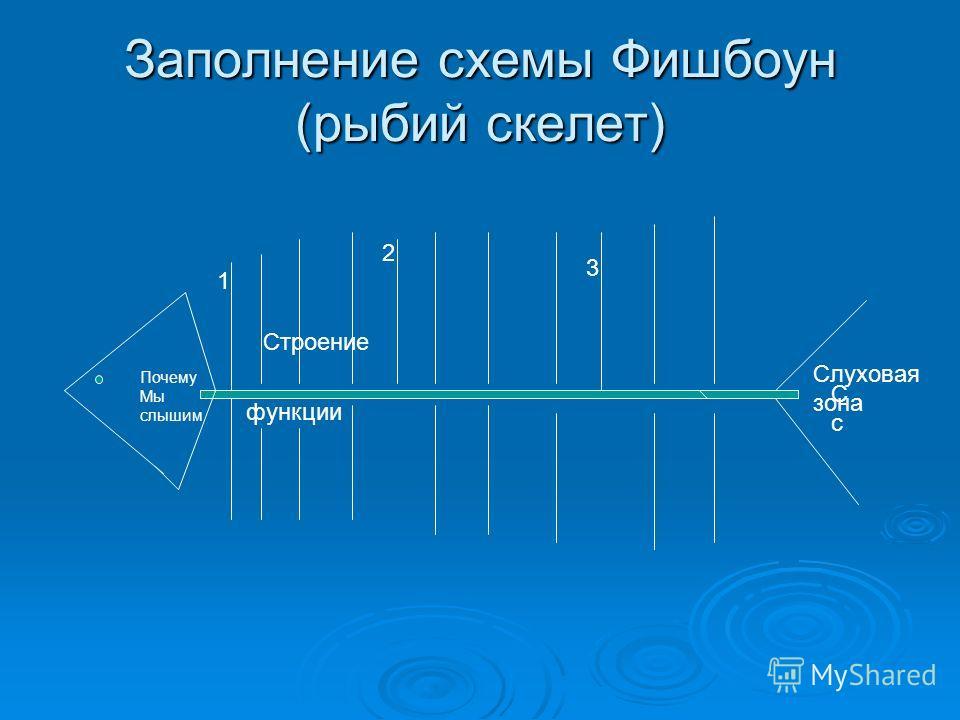 Заполнение схемы Фишбоун (рыбий скелет) Почему Мы слышим 1 3 2 функции СсСс Слуховая зона Строение