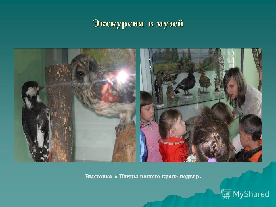 Экскурсия в музей Выставка « Птицы нашего края» подг.гр.