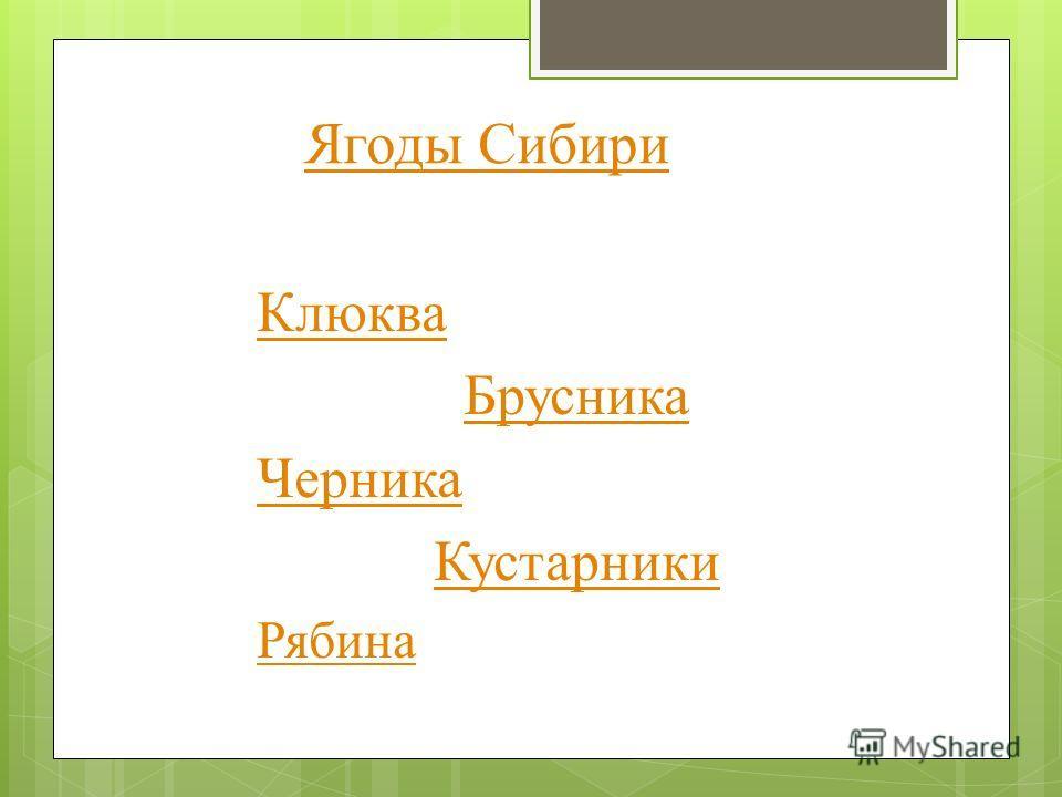 Ягоды Сибири Клюква Брусника Черника Кустарники Рябина