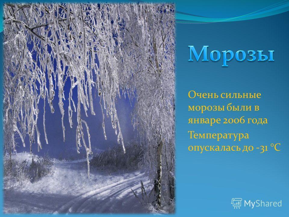 Очень сильные морозы были в январе 2006 года Температура опускалась до -31 °C