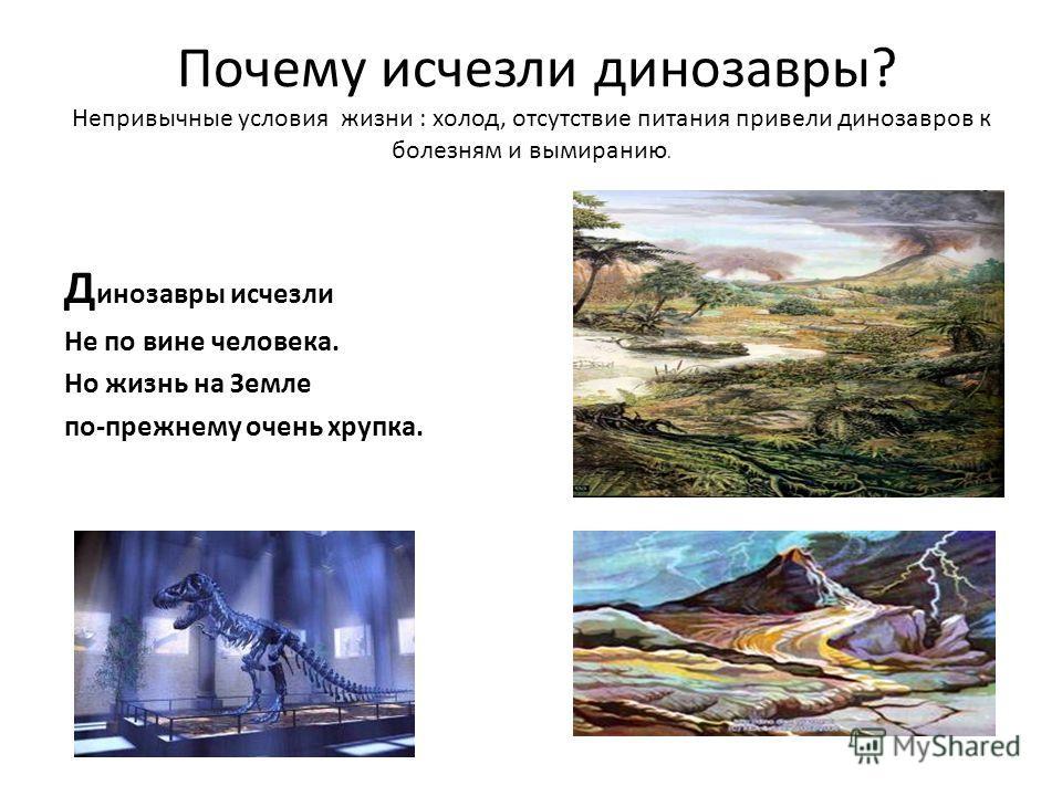 Почему исчезли динозавры? Непривычные условия жизни : холод, отсутствие питания привели динозавров к болезням и вымиранию. Д инозавры исчезли Не по вине человека. Но жизнь на Земле по-прежнему очень хрупка.