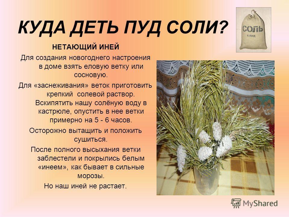 КУДА ДЕТЬ ПУД СОЛИ? НЕТАЮЩИЙ ИНЕЙ Для создания новогоднего настроения в доме взять еловую ветку или сосновую. Для «заснеживания» веток приготовить крепкий солевой раствор. Вскипятить нашу солёную воду в кастрюле, опустить в нее ветки примерно на 5 -