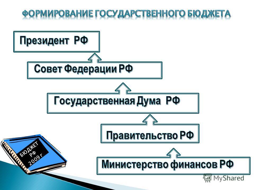 БЮДЖЕТ РФ 2009 г.