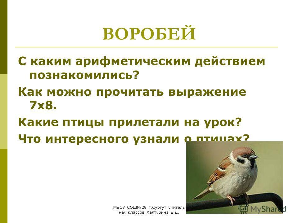 МБОУ СОШ29 г.Сургут учитель нач.классов Халтурина Е.Д. ВОРОБЕЙ С каким арифметическим действием познакомились? Как можно прочитать выражение 7х8. Какие птицы прилетали на урок? Что интересного узнали о птицах?