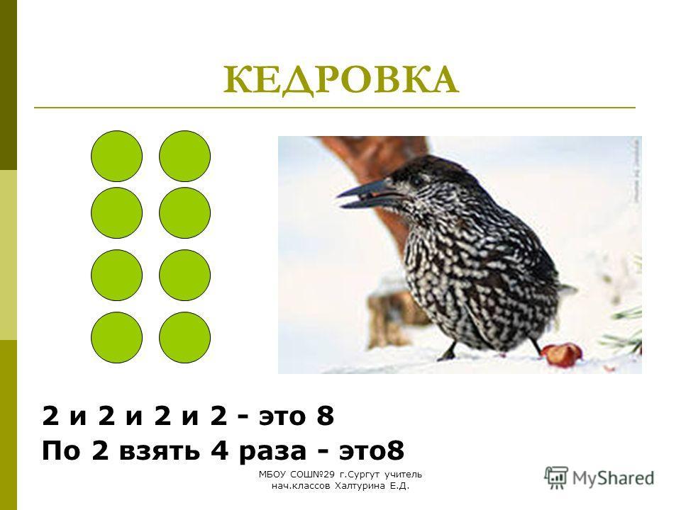 МБОУ СОШ29 г.Сургут учитель нач.классов Халтурина Е.Д. КЕДРОВКА 2 и 2 и 2 и 2 - это 8 По 2 взять 4 раза - это8