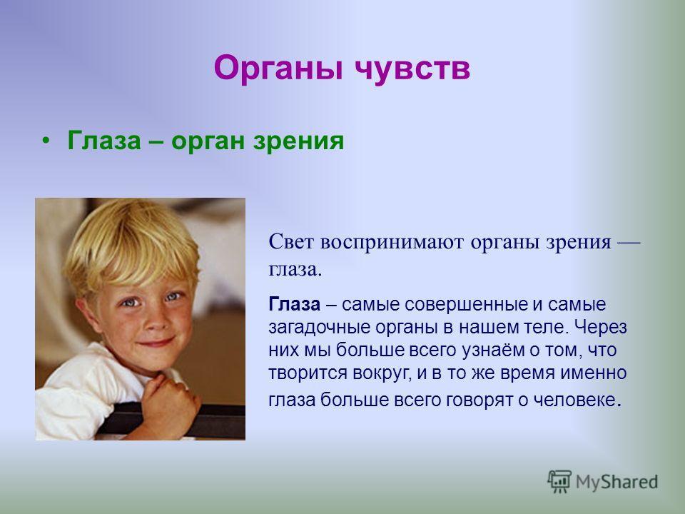 Органы чувств Глаза – орган зрения Свет воспринимают органы зрения глаза. Глаза – самые совершенные и самые загадочные органы в нашем теле. Через них мы больше всего узнаём о том, что творится вокруг, и в то же время именно глаза больше всего говорят