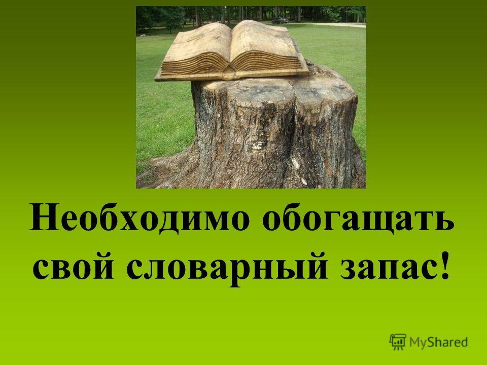 Необходимо обогащать свой словарный запас!