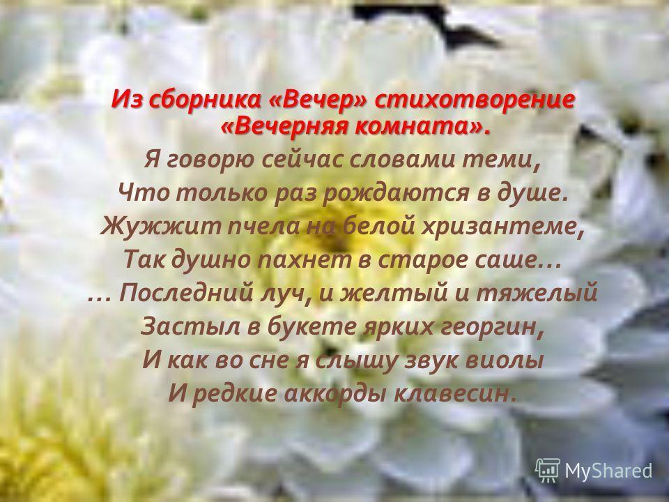 Из сборника « Вечер » стихотворение « Вечерняя комната ». Я говорю сейчас словами теми, Что только раз рождаются в душе. Жужжит пчела на белой хризантеме, Так душно пахнет в старое саше … … Последний луч, и желтый и тяжелый Застыл в букете ярких геор