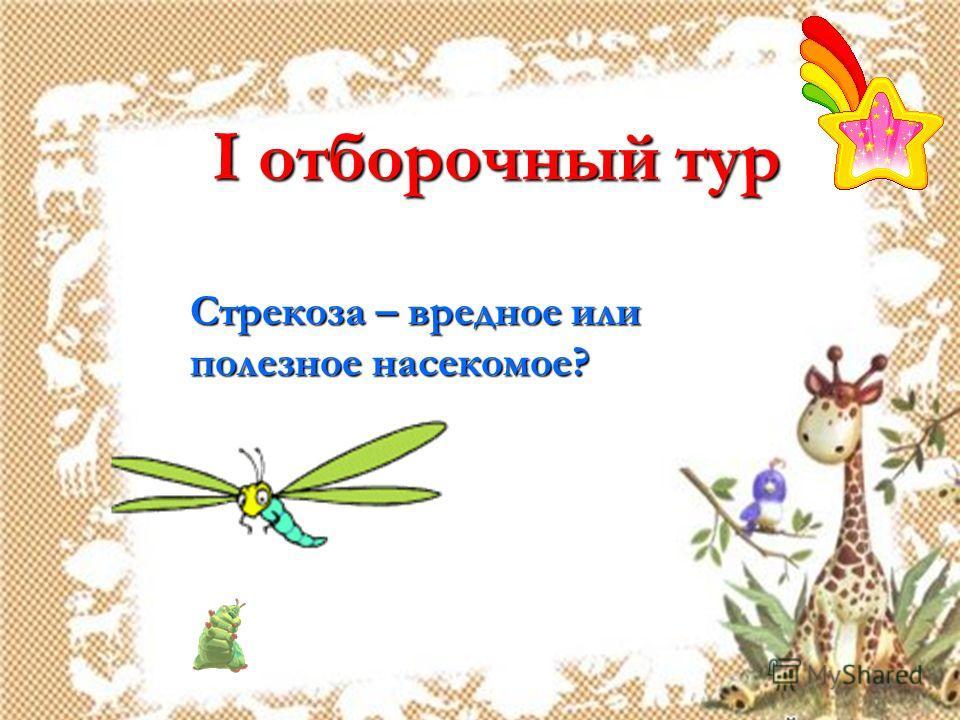 I отборочный тур Стрекоза – вредное или полезное насекомое?