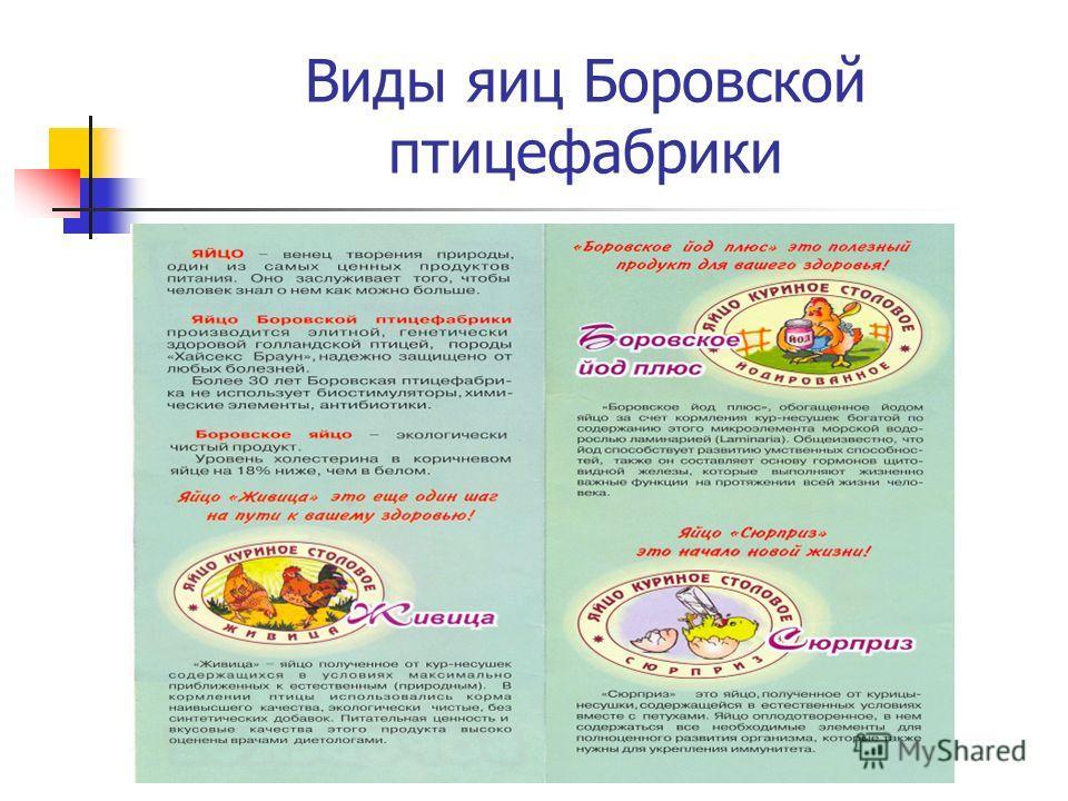 Виды яиц Боровской птицефабрики