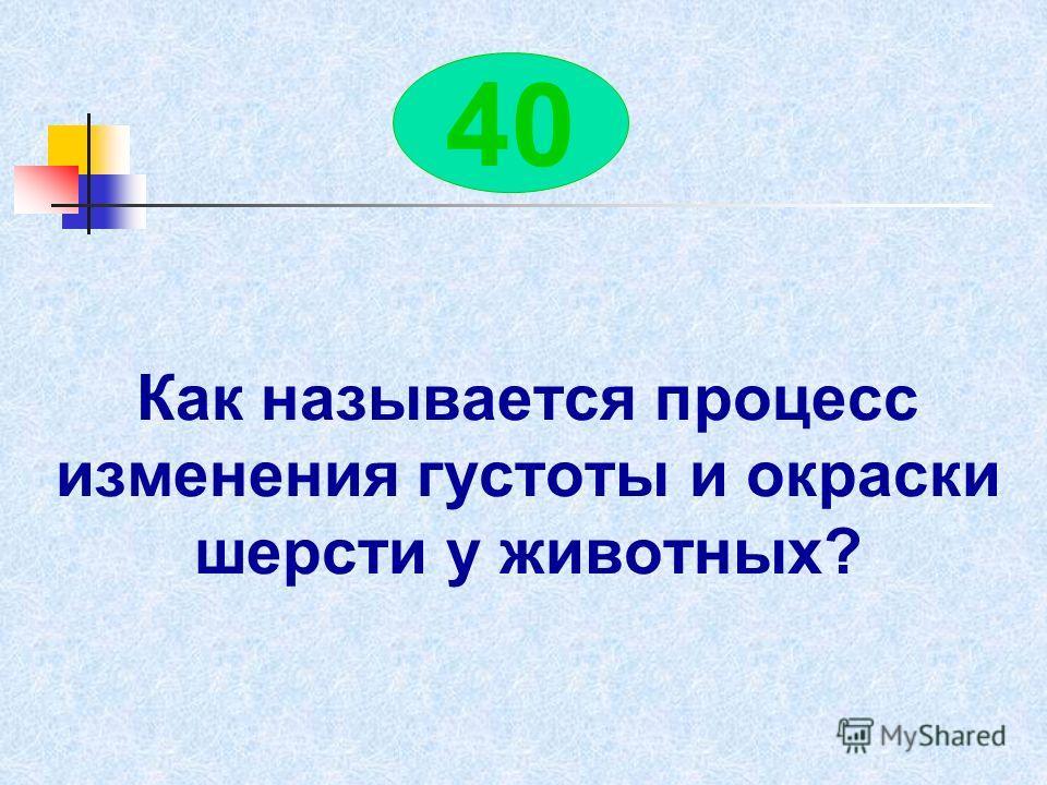 По небу летели 3 утки, 2 гуся и 4 курицы. Сколько всего птиц летело по небу? 40