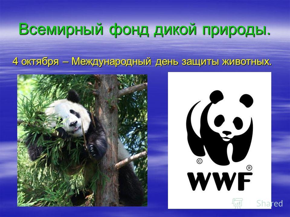 Всемирный фонд дикой природы. 4 октября – Международный день защиты животных.