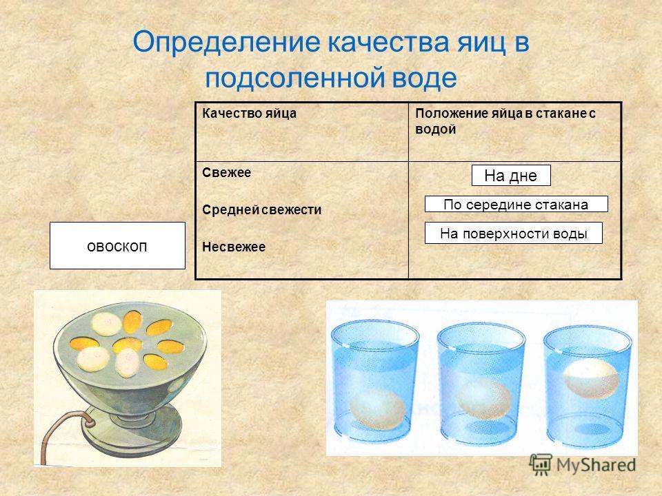 Определение качества яиц в подсоленной воде Качество яйцаПоложение яйца в стакане с водой Свежее Средней свежести Несвежее На дне По середине стакана На поверхности воды овоскоп