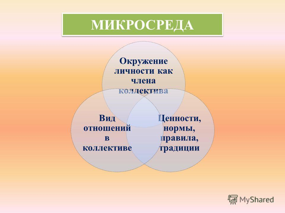 МИКРОСРЕДА Окружение личности как члена коллектива Ценности, нормы, правила, традиции Вид отношений в коллективе