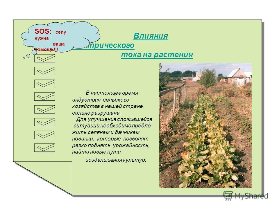 Влияния электрического тока на растения Влияния электрического тока на растения SOS: селу нужна ваша помощь!!! В настоящее время индустрия сельского хозяйства в нашей стране сильно разрушена. Для улучшения сложившейся ситуации необходимо предло- жить