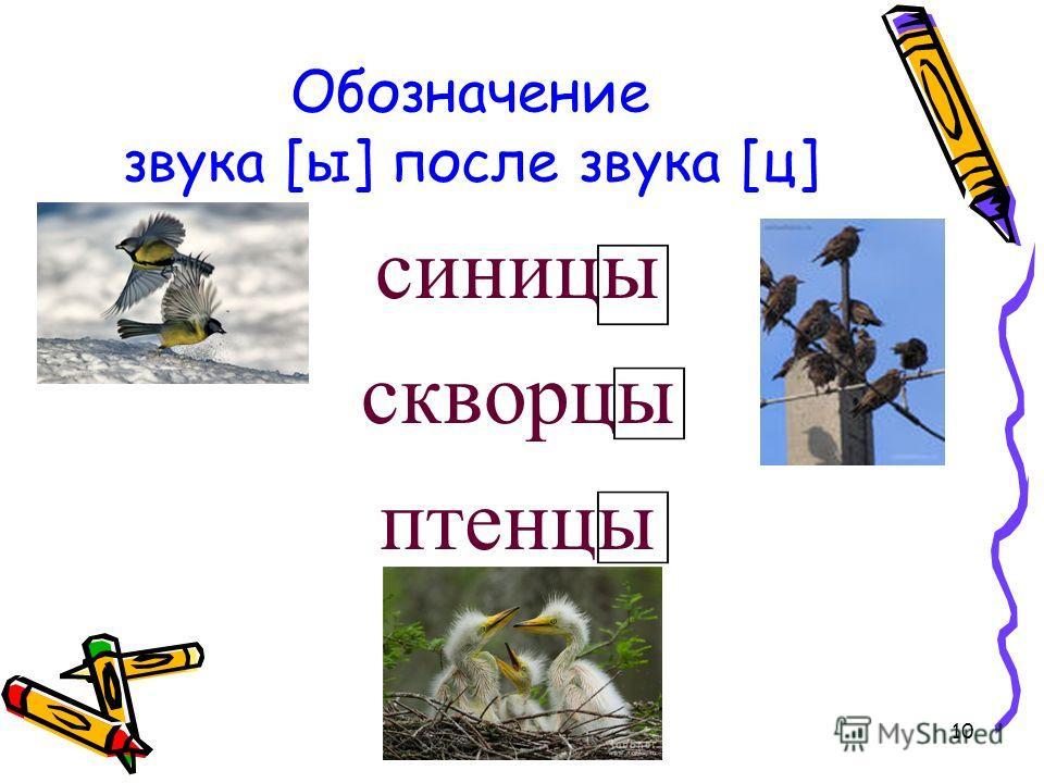 10 Обозначение звука [ы] после звука [ц] синицы скворцы птенцы