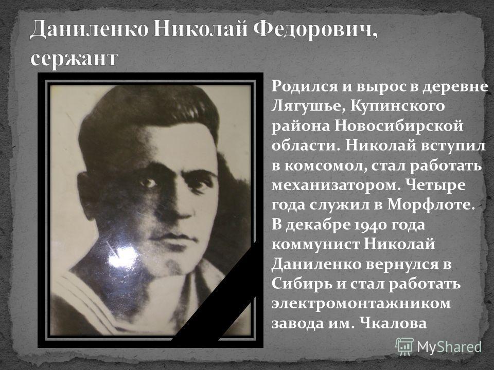 Родился и вырос в деревне Лягушье, Купинского района Новосибирской области. Николай вступил в комсомол, стал работать механизатором. Четыре года служил в Морфлоте. В декабре 1940 года коммунист Николай Даниленко вернулся в Сибирь и стал работать элек