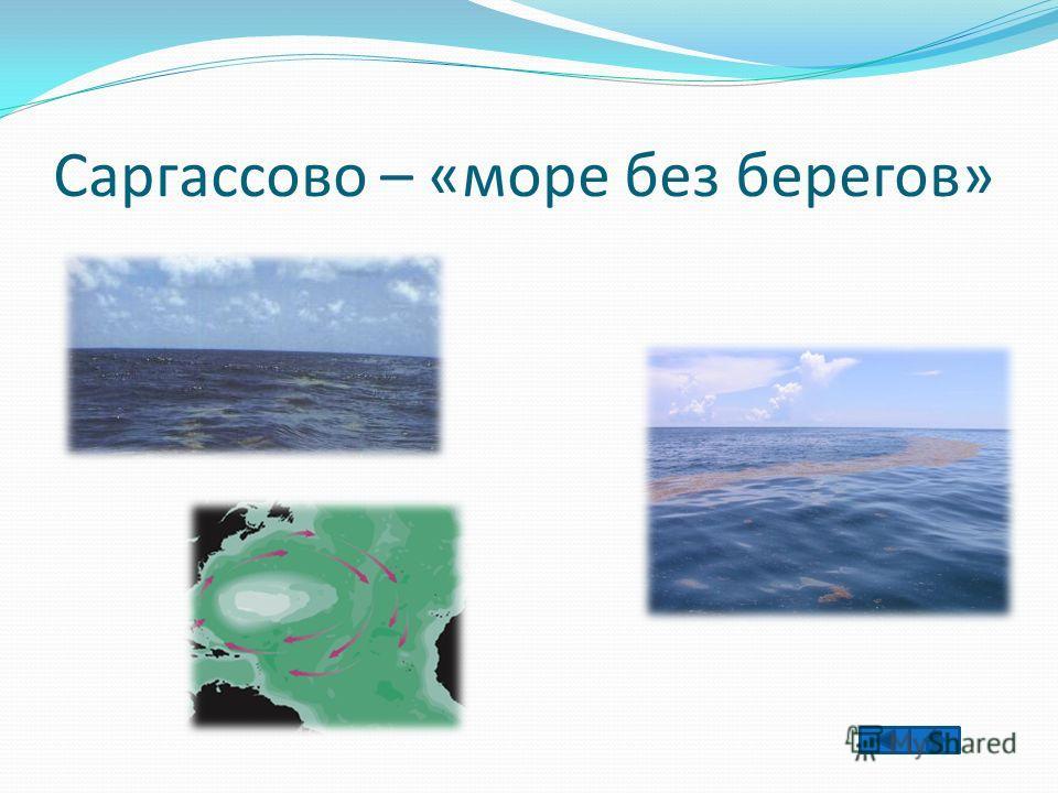 Саргассово – «море без берегов»