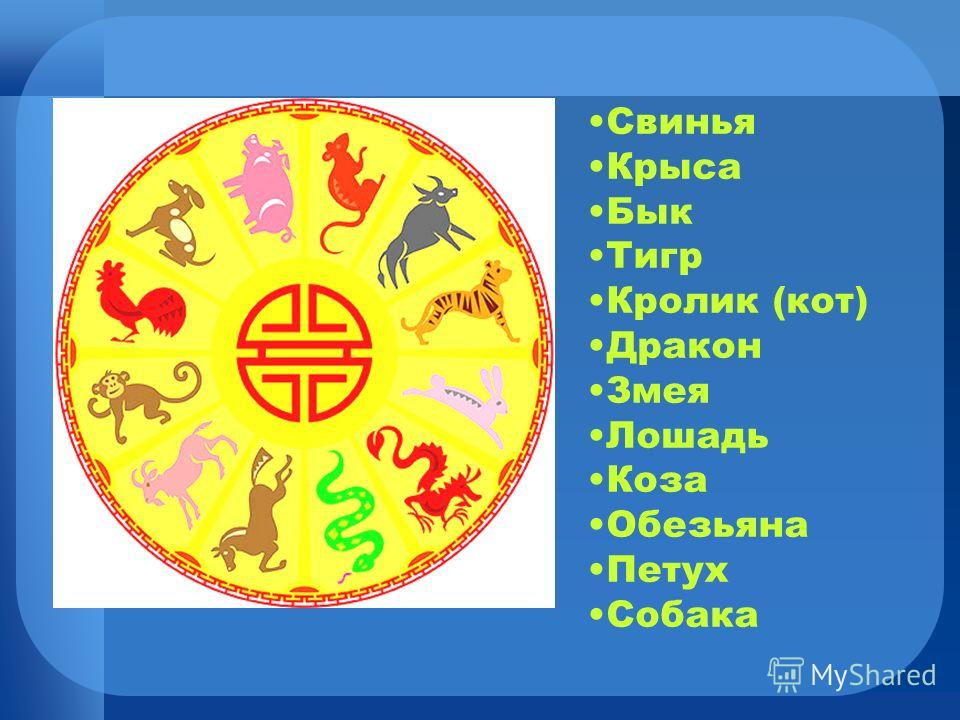 СвиньяКрысаБыкТигрКролик (кот)ДраконЗмеяЛошадьКозаОбезьяна ПетухСобака