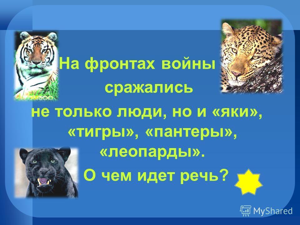 На фронтах войны сражались не только люди, но и «яки», «тигры», «пантеры», «леопарды». О чем идет речь?