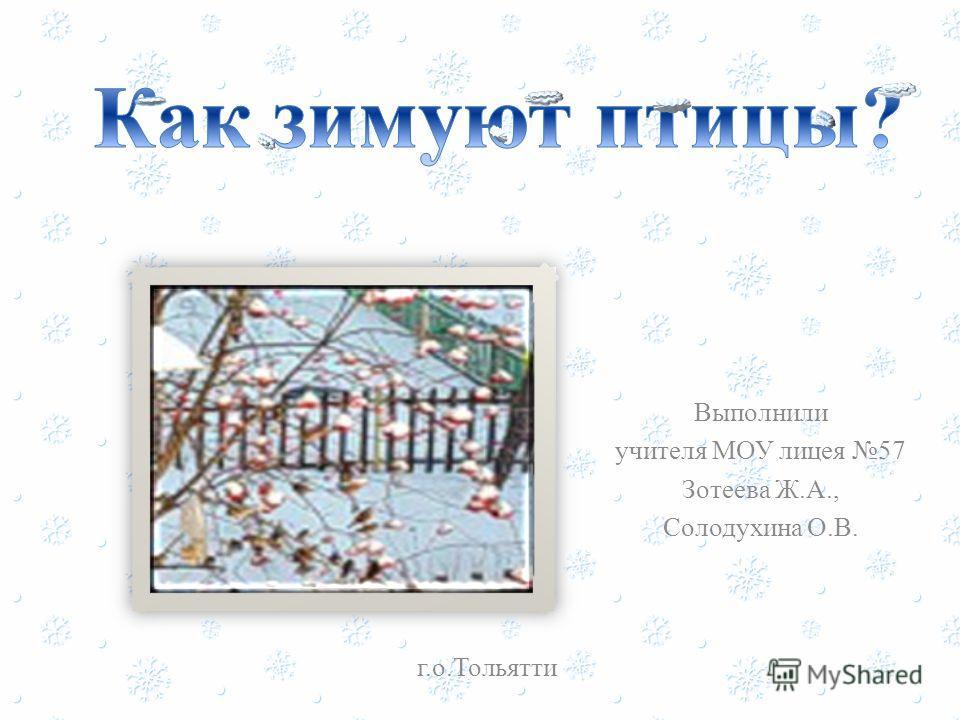 Выполнили учителя МОУ лицея 57 Зотеева Ж.А., Солодухина О.В. г.о.Тольятти