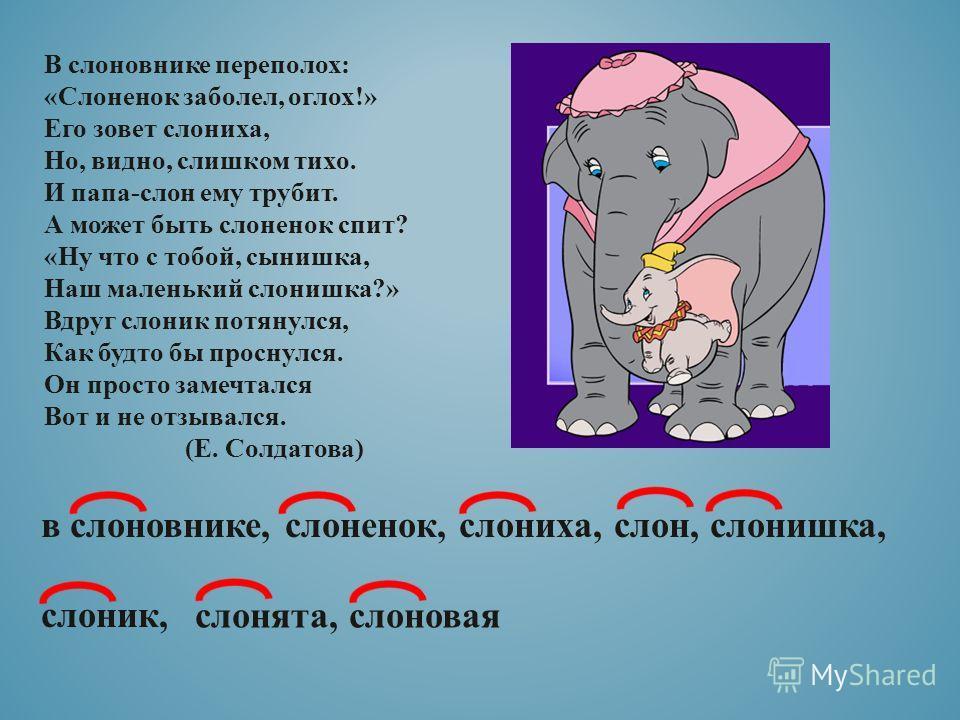 В слоновнике переполох: «Слоненок заболел, оглох!» Его зовет слониха, Но, видно, слишком тихо. И папа-слон ему трубит. А может быть слоненок спит? «Ну что с тобой, сынишка, Наш маленький слонишка?» Вдруг слоник потянулся, Как будто бы проснулся. Он п