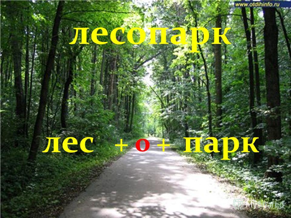 лесопарк лес + о + парк