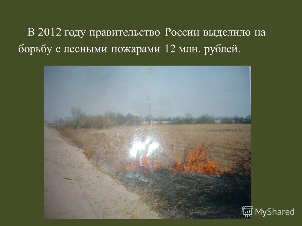 В 2012 году правительство России выделило на борьбу с лесными пожарами 12 млн. рублей.