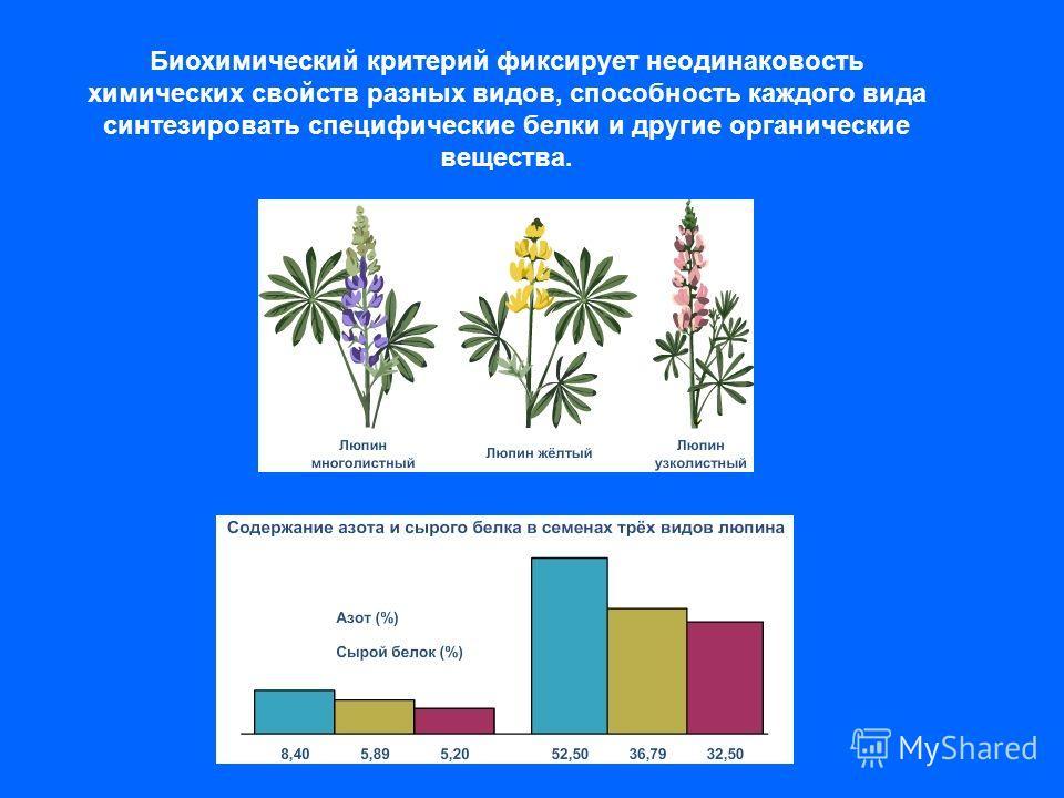 Биохимический критерий фиксирует неодинаковость химических свойств разных видов, способность каждого вида синтезировать специфические белки и другие органические вещества.