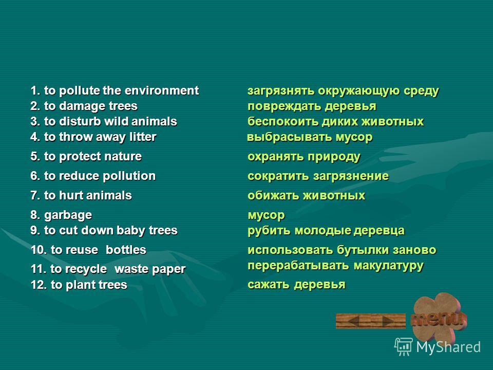 загрязнять окружающую среду 1. to pollute the environment 1. to pollute the environment 2. to damage trees 2. to damage trees 3. to disturb wild animals 3. to disturb wild animals 4. to throw away litter 4. to throw away litter 5. to protect nature 5