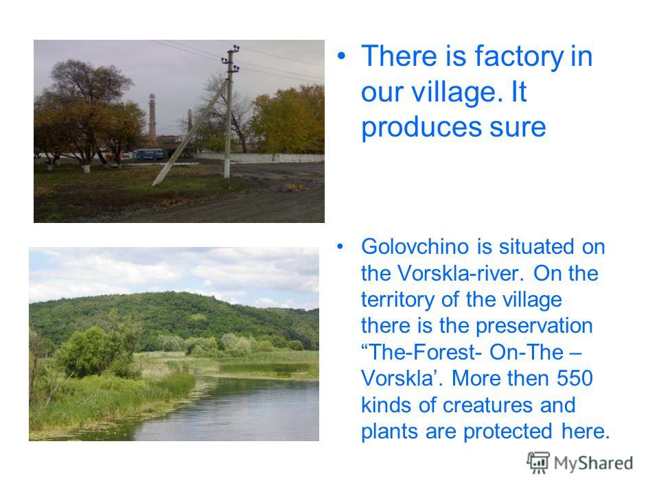 There is factory in our village. It produces sure Golovchino is situated on the Vorskla-river. On the territory of the village there is the preservation The-Forest- On-The – Vorskla. More then 550 kinds of creatures and plants are protected here.