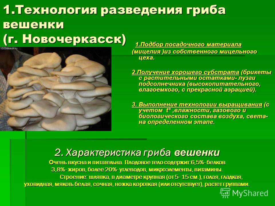 Технология выращивания грибов в до 380
