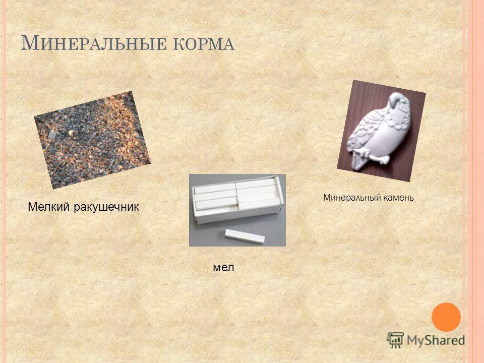 М ИНЕРАЛЬНЫЕ КОРМА Мелкий ракушечник мел Минеральный камень