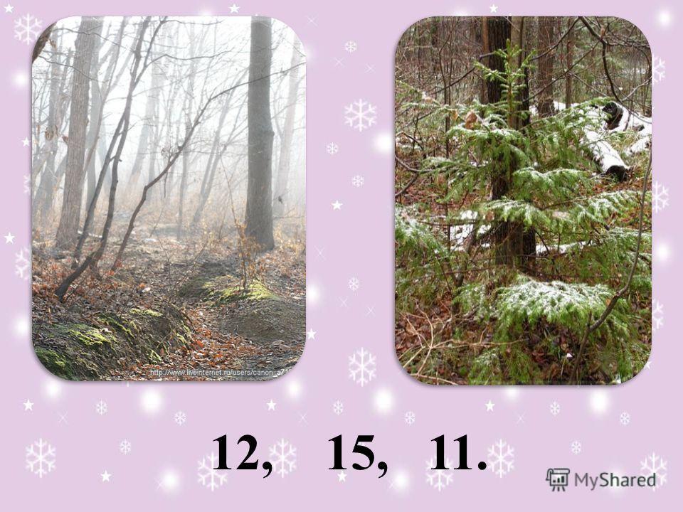 12, 15, 11.