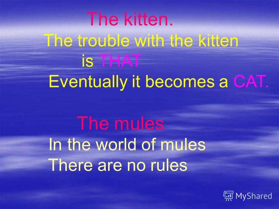 The kitten. The trouble with the kitten is THAT Eventually it becomes a CAT. The mules In the world of mules There are no rules
