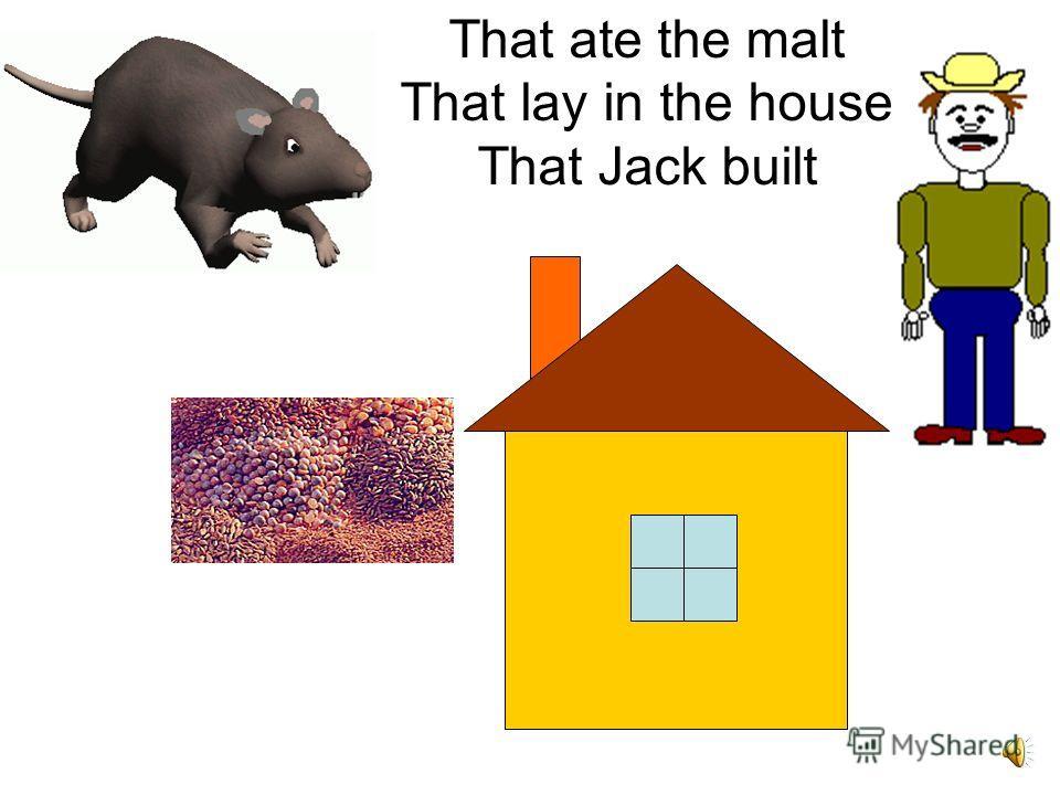 That killed the rat
