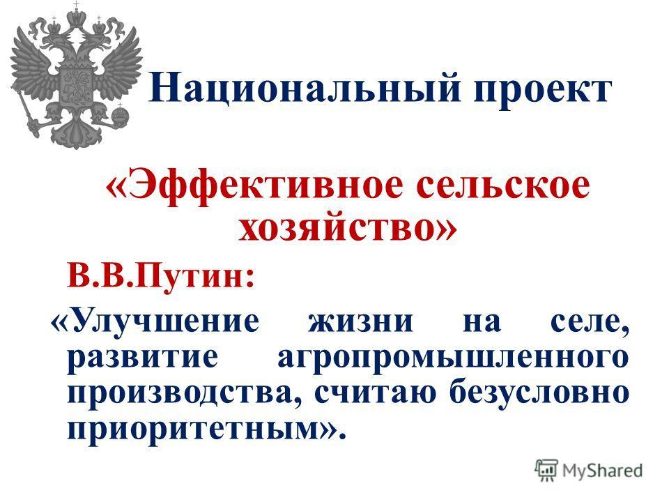 Национальный проект «Эффективное сельское хозяйство» В.В.Путин: «Улучшение жизни на селе, развитие агропромышленного производства, считаю безусловно приоритетным».